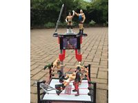 WWE Wrestling 2 Rings With All Figures !!!