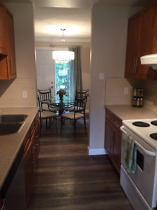 Reduced! Newly renovated, spacious, 3 bedroom, condo for rent