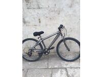 Mountain xray bike