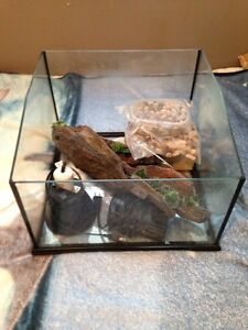 10 gallon turtle tank (with accessories)