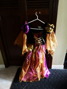 Kids Halloween Costumes (Great Condition-both girls & boys)