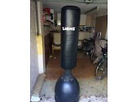 Lions Punching bag with boxing gloves and Thai pads