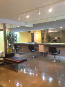 Beauty Salon and Hair Salon