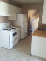 IMMEDIATELY! 3 Bedroom Condo - Separate Entrance - Small Pet Ok