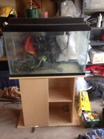 Fish tank + stand + rocks and filter