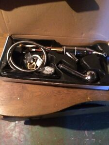 Danze pull out kitchen tap