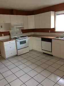 House for rent Campbell River Comox Valley Area image 5