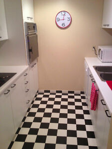 Female Roommate Wanted for Condo in the McGill Ghetto