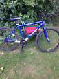 Cross LXT300 mens mountain bike
