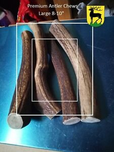 Red Deer Antler Dog Chews (Imported! CWD Free)Safe for your dogs