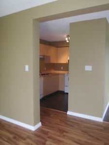 Newly renovated condo in Westpark Strathcona County Edmonton Area image 1