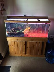 Selling fish tank setup