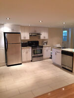 NEWLY RENOVATED 2 BEDROOM BASEMENT APT, ALL S/S APP-NDG DOWNTOWN