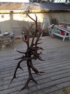 Elk antler hat,coat, boot rack