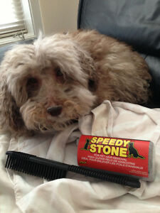 PROFESSIONAL PET HAIR/ODOR/STAIN/SALT REMOVAL PRODUCTS FOR SALE