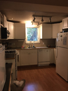 3 bdrm upstairs suite on SW hill   1150.00/Includes Utilities