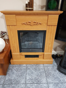 fireplace/Electric