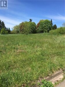 1.2 Acre secluded lot in the city for your dream home!!