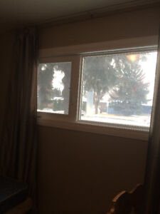 December 1 Cose to U of S room for rent