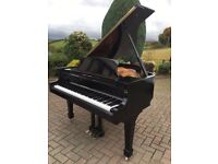 Samick black polyester baby grand | Belfast Pianos