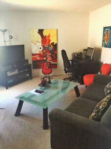 1BR Apartment Fully Furnished Available from January 15 - $1800