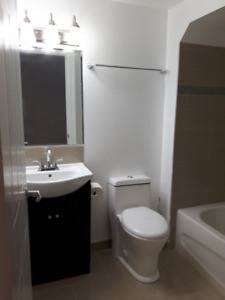 Basement Apt for Rent - January 1st - Southend of Guelph