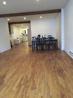 ROOMMATE SEARCH FOR PLATEAU LOFT