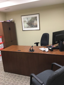 Desk and Cabinet - Excellent Condition