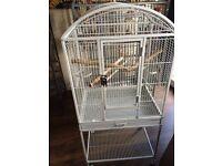 Bird parrot cage
