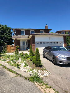1 room for rent in basement apartment,  Mississauga.