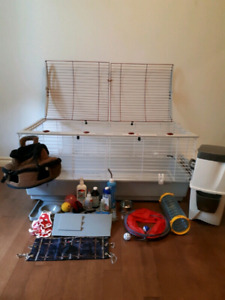 Cage et accessoires pour furet