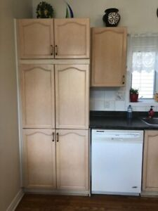 Used Kitchen Cabinets Kijiji In Ottawa Buy Sell Save With
