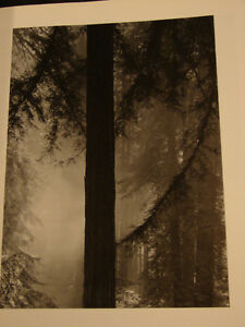 Ansel Adams: An Autobiography (for the photography lover) Belleville Belleville Area image 9