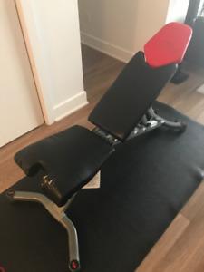 Bowflex bench + tapis