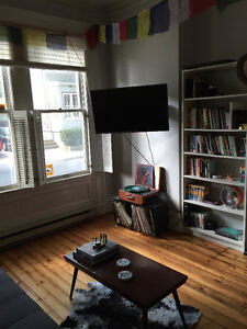 Beautiful character apartment in south end