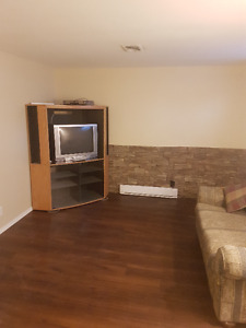 Apartment in Hyde Park Area - Furnished / Unfurnished