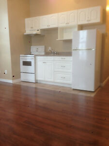 Beautiful 1 Bedroom apartment... Downtown living! Free Wifi!