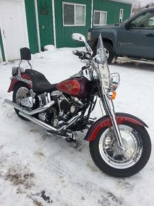 Harley Davidson- Fat boy