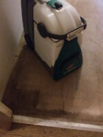 carpet cleaning 24 hours