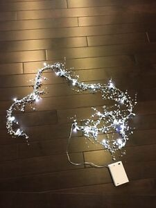 Twinkle lights, Wedding lights, String lights - battery operated