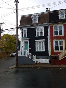Furnished 3-Storey Home Downtown/Georgestown