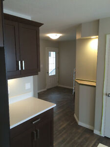 Harbour Landing, 4 bedroom, double garage, overlooks park Regina Regina Area image 10