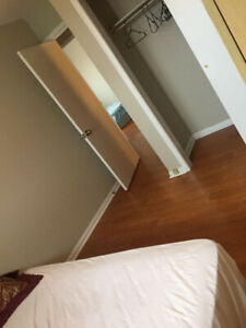 Clean, Quiet, Furnished Room for Rent - Available Now
