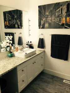 general contractor in kelowna - Bathroom Cabinets Kelowna