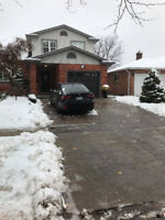 Niagara Snow Removal - Residential & Commercial