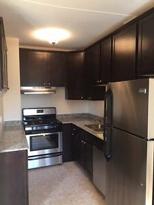 ISO quiet 1 bedroom apartment/suite for July 1st