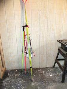 ski's various kinds
