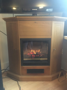 Electric Fireplace (Working!)