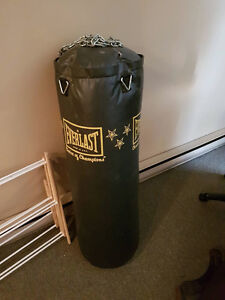 LOWERED PRICE! 100lb Everlast Punching Bag /w Hanging Chains