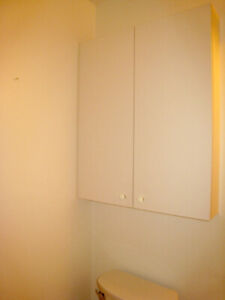 Wall Cabinet, shallow.
